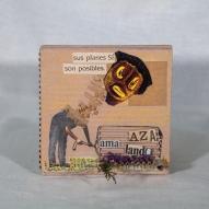 AMa_AZa_LaNdO-Cajas_(35_de_93)
