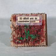 AMa_AZa_LaNdO-Cajas_(58_de_93)