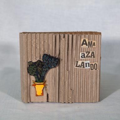 AMa_AZa_LaNdO-Cajas_(66_de_93)