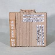 AMa_AZa_LaNdO-Cajas_(84_de_93)